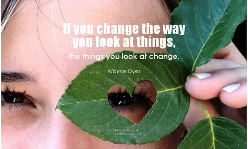 Change the way you see.